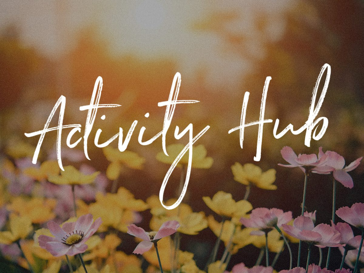 Activity Hub Launch